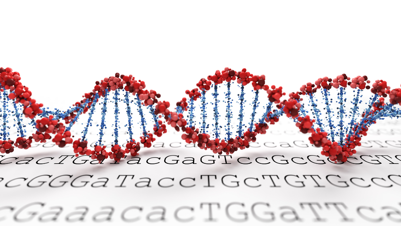 Clinical Sanger Sequencing